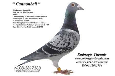 PeterEmbregts-Cannonnball-2